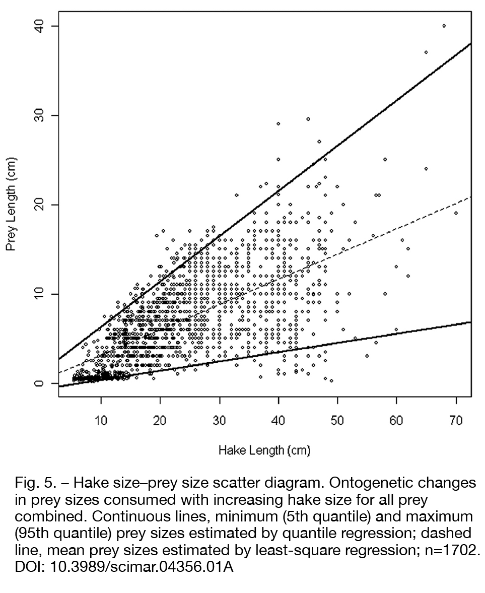 hake size–prey size scatter diagram  ontogenetic changes in prey sizes  consumed with increasing hake size for all prey combined